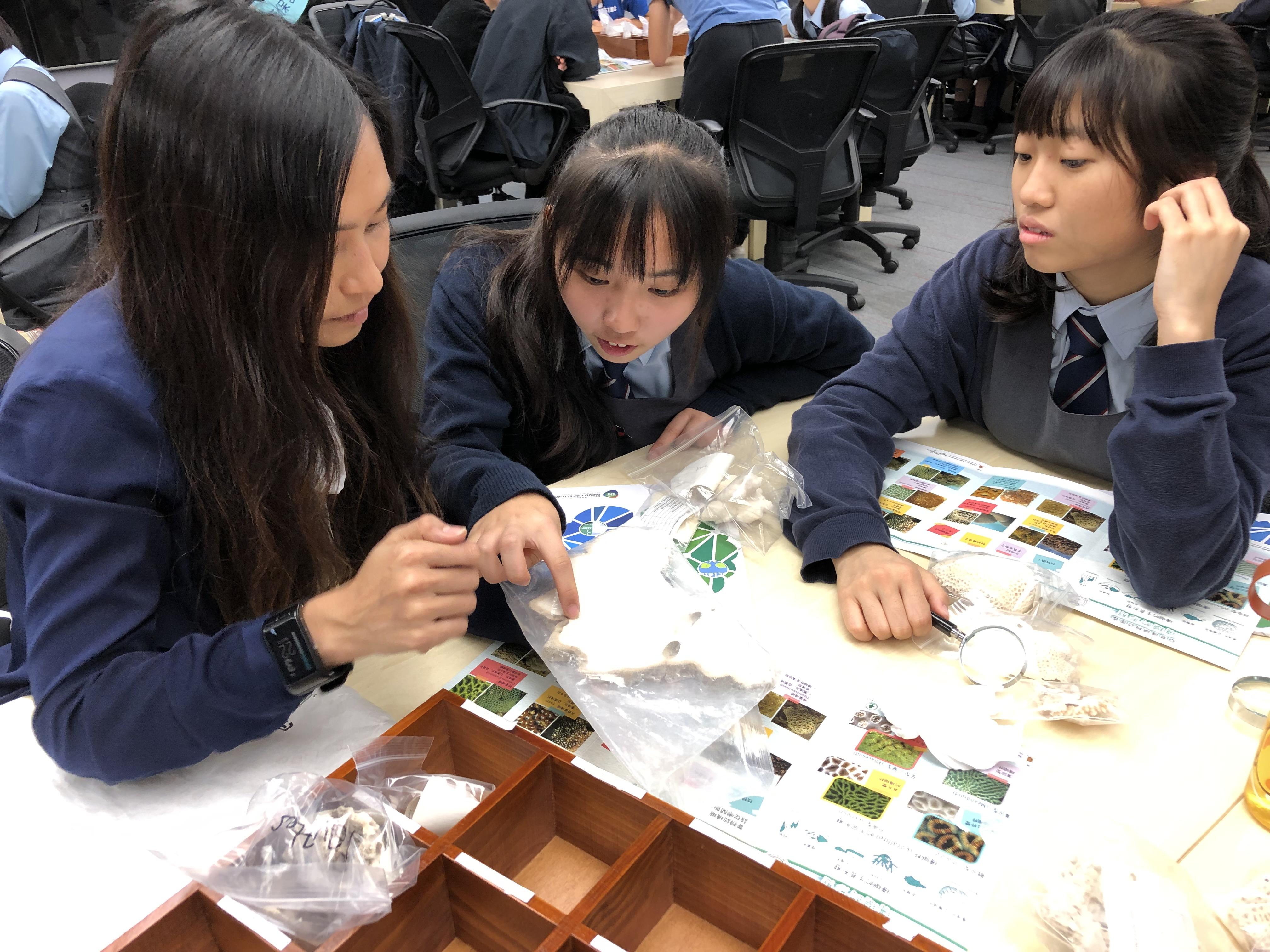 diversified curriculum_珊瑚工作坊_1 (2)